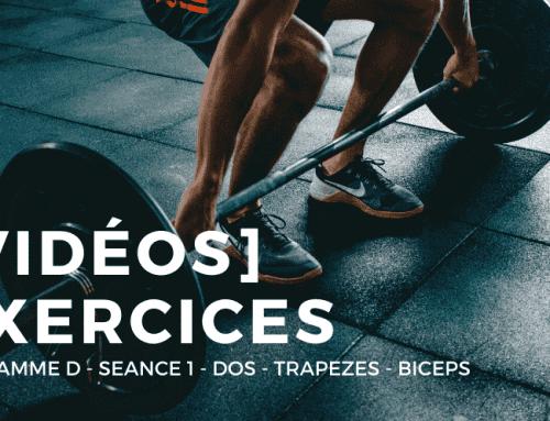 [Vidéos] Programme D : Séance 1 – Dos – Trapèzes – Biceps