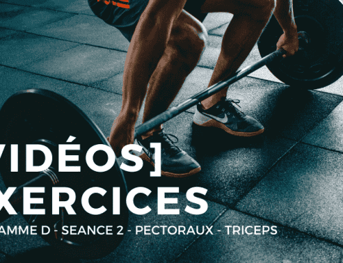 [Vidéos] Programme D – Séance 2 – Pectoraux – Triceps